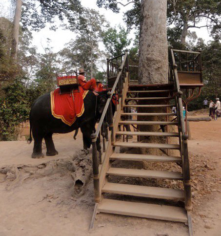 ride an elephant, bakheng hill, phnom bakheng, siem reap, angkor wat, temples, sunset